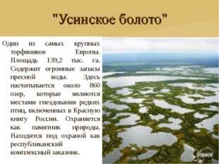 """""""Усинское болото"""" Один из самых крупных торфяников Европы. Площадь 139,2 тыс."""