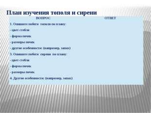 План изучения тополя и сирени ВОПРОС ОТВЕТ 1. Опишитепобегитополяпо плану: -ц