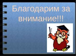 Благодарим за внимание!!! Какие горы Евразии расположены за пределами поясов
