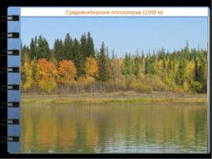 Среднесибирское плоскогорье (1000 м) Какие формы рельефа соответствуют равнин