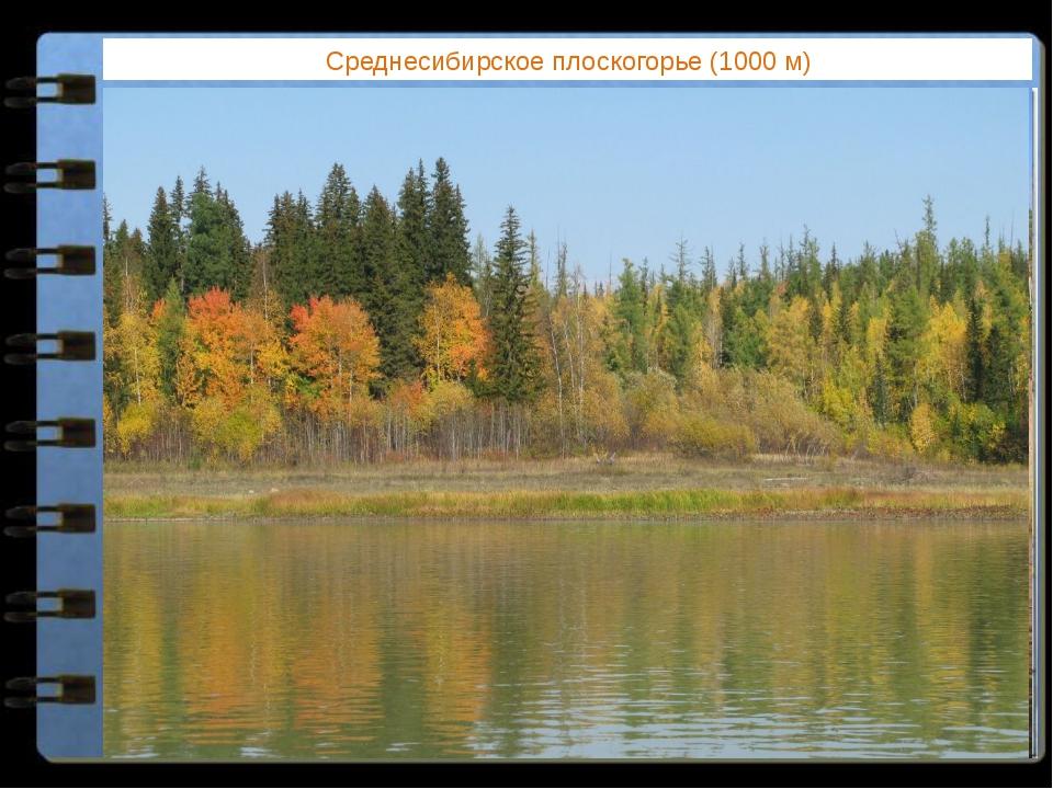 Среднесибирское плоскогорье (1000 м) Какие формы рельефа соответствуют равнин...