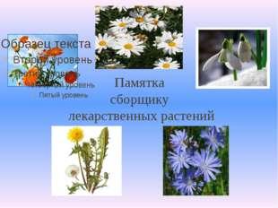 Памятка сборщику лекарственных растений