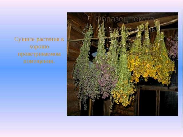 Сушите растения в хорошо проветриваемом помещении.