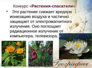 Конкурс «Растения-спасатели» Это растение снижает вредную ионизацию воздуха