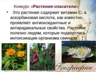 Конкурс «Растения-спасатели» Это растение содержит витамин С, а аскорбиновая