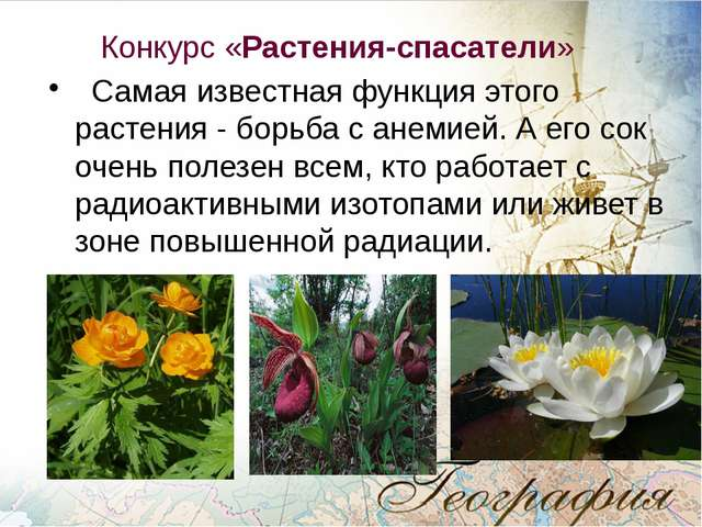 Конкурс «Растения-спасатели» Самая известная функция этого растения - борьба...