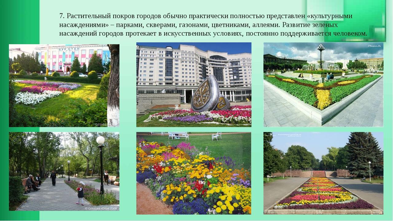7. Растительный покров городов обычно практически полностью представлен «куль...