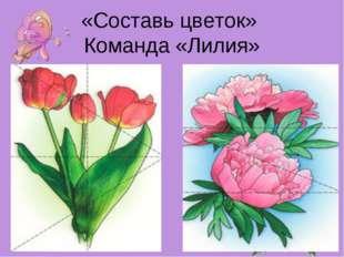 «Составь цветок» Команда «Лилия»