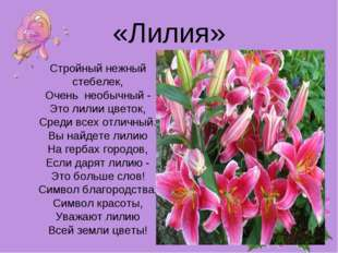 «Лилия» Стройный нежный стебелек, Очень необычный - Это лилии цветок, Среди