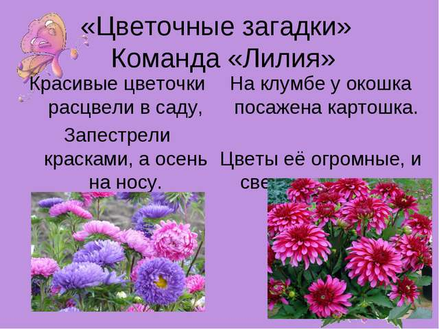 «Цветочные загадки» Команда «Лилия» Красивые цветочки расцвели в саду, Запест...