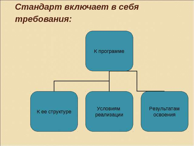 Стандарт включает в себя требования: