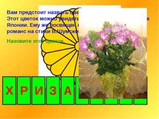 Вам предстоит назвать цветок – талисман ноября. Этот цветок можно увидеть в Г
