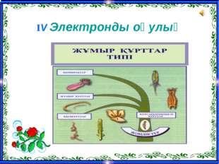 ІV Электронды оқулық
