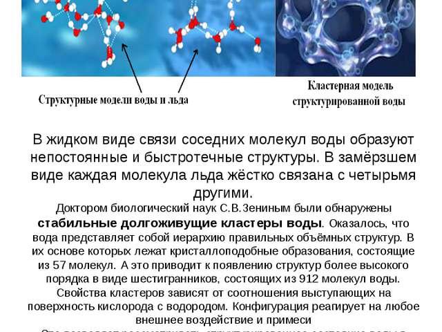 В жидком виде связи соседних молекул воды образуют непостоянные и быстротечны...