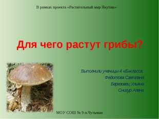 Для чего растут грибы? Выполнили ученицы 4 «Б»класса: Федотова Светлана Берез