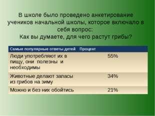 В школе было проведено анкетирование учеников начальной школы, которое включа
