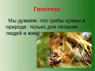 Гипотеза: Мы думаем, что грибы нужны в природе только для питания людей и жив