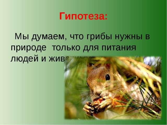 Гипотеза: Мы думаем, что грибы нужны в природе только для питания людей и жив...