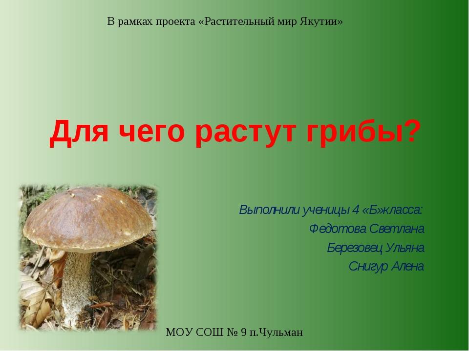 Для чего растут грибы? Выполнили ученицы 4 «Б»класса: Федотова Светлана Берез...
