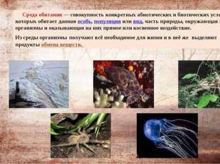Среда обитания— совокупность конкретных абиотических и биотических условий,