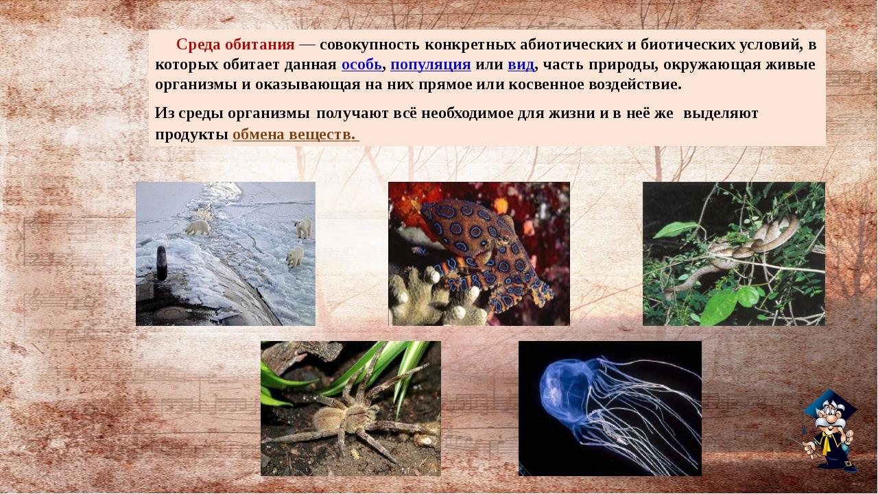 Среда обитания— совокупность конкретных абиотических и биотических условий,...