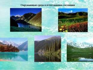 Окружающая среда в естественном состоянии