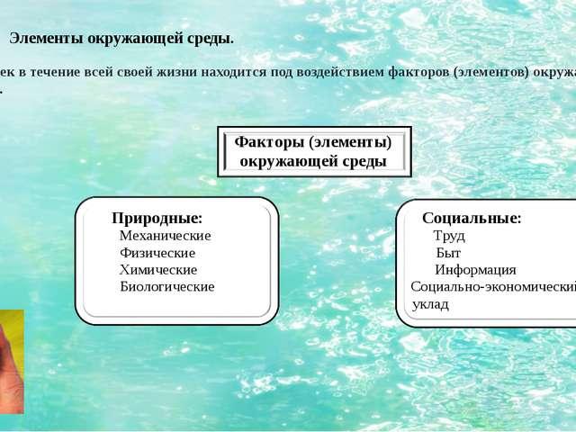Элементы окружающей среды. Человек в течение всей своей жизни находится под в...