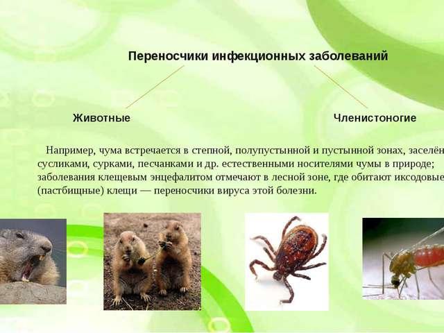Переносчики инфекционных заболеваний Животные Членистоногие Например, чума вс...