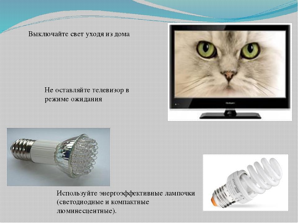 Используйте энергоэффективные лампочки (светодиодные и компактные люминесцент...