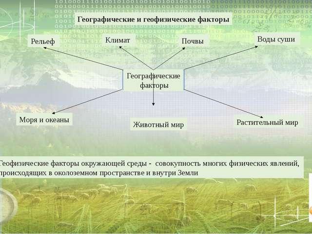 Географические и геофизические факторы Геофизические факторы окружающей сред...