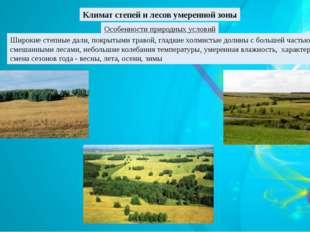 Климат степей и лесов умеренной зоны Особенности природных условий Широкие ст
