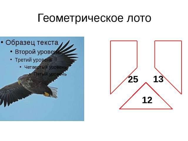 12 13 25 Геометрическое лото