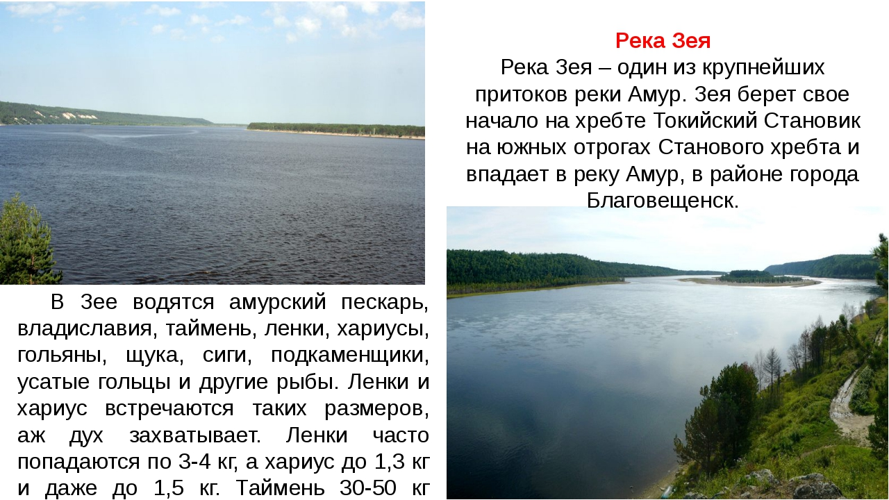 Река Зея Река Зея – один из крупнейших притоков реки Амур. Зея берет свое нач...