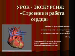 УРОК - ЭКСКУРСИЯ: «Строение и работа сердца» Лукшанова Н.Г., учитель биологи