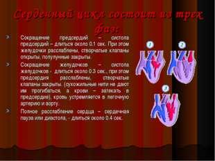 Сердечный цикл состоит из трех фаз: Сокращение предсердий – систола предсерди