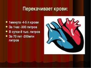 Перекачивает крови: 1минута -4-5 л крови За 1час -300 литров В сутки-8 тыс. л