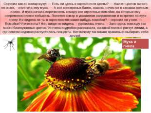 Спросил как-то комар муху: — Есть ли здесь в окрестности цветы? — Насчет цвет
