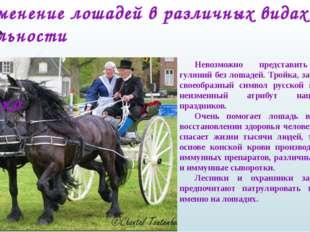 Применение лошадей в различных видах деятельности человека Невозможно пре