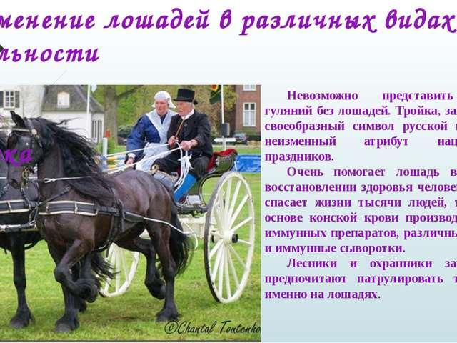 Применение лошадей в различных видах деятельности человека Невозможно пре...