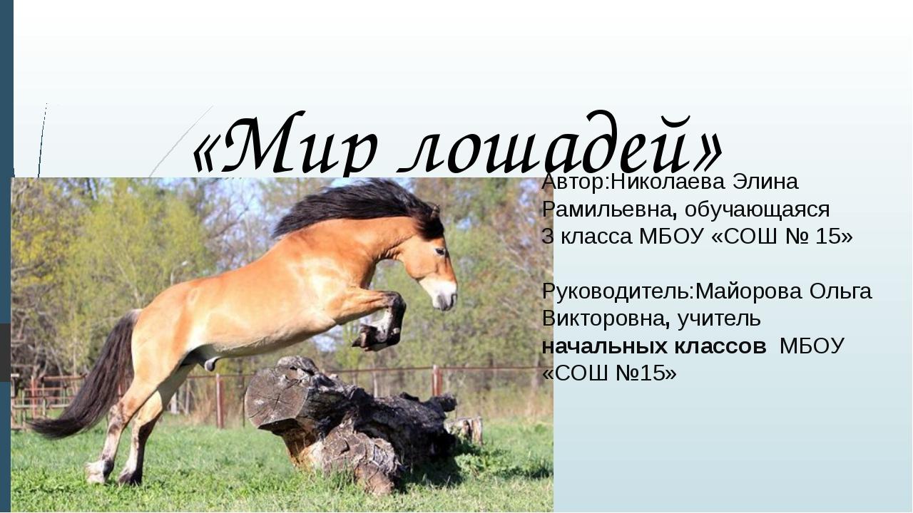 «Мир лошадей» Автор:Николаева Элина Рамильевна, обучающаяся 3 класса МБОУ «СО...