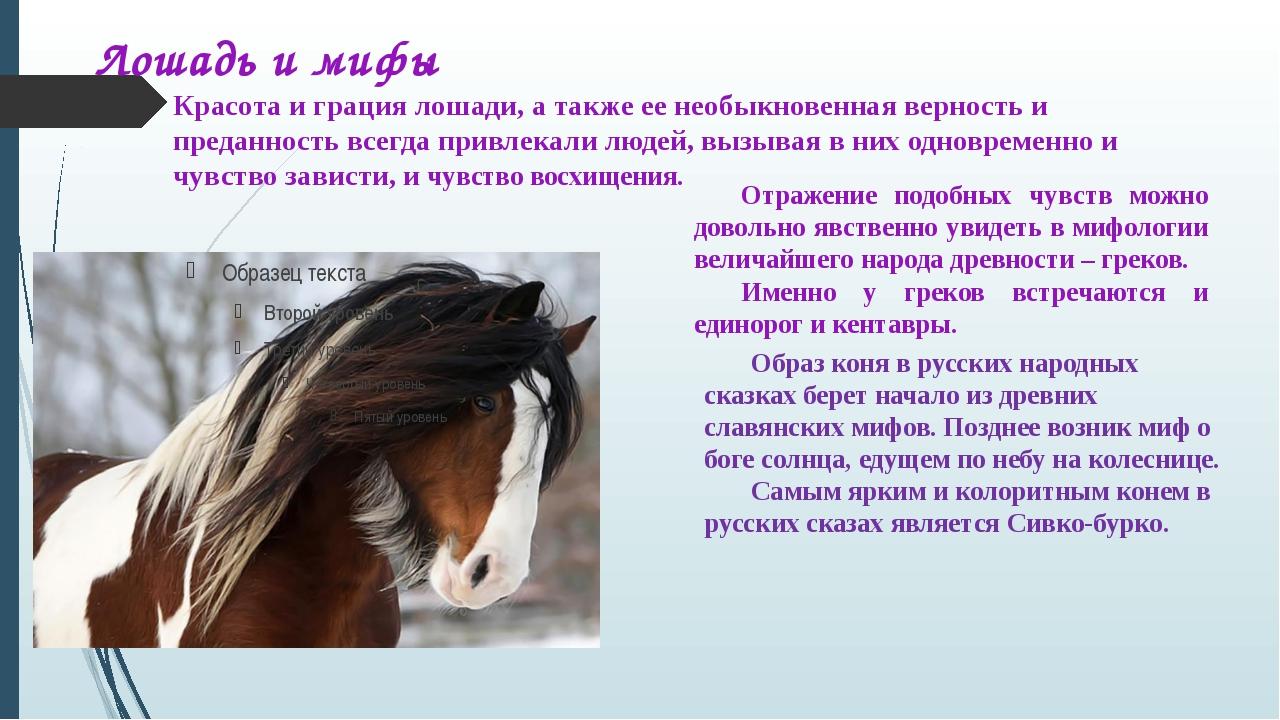 Красота и грация лошади, а также ее необыкновенная верность и преданность все...