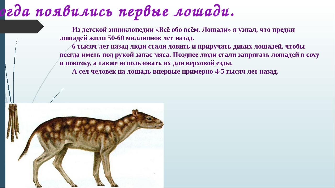Из детской энциклопедии «Всё обо всём. Лошади» я узнал, что предки лошадей жи...