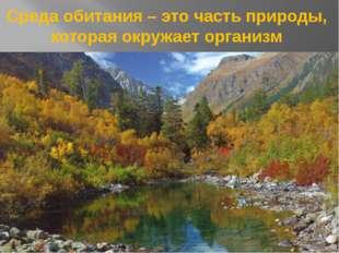 Среда обитания – это часть природы, которая окружает организм