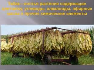Табак—листья растения содержащие клетчатку, углеводы, алкалоиды, эфирные масл