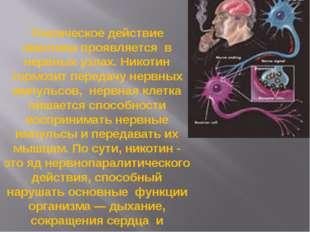 Токсическое действие никотина проявляется в нервных узлах. Никотин тормозит п