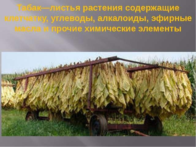 Табак—листья растения содержащие клетчатку, углеводы, алкалоиды, эфирные масл...