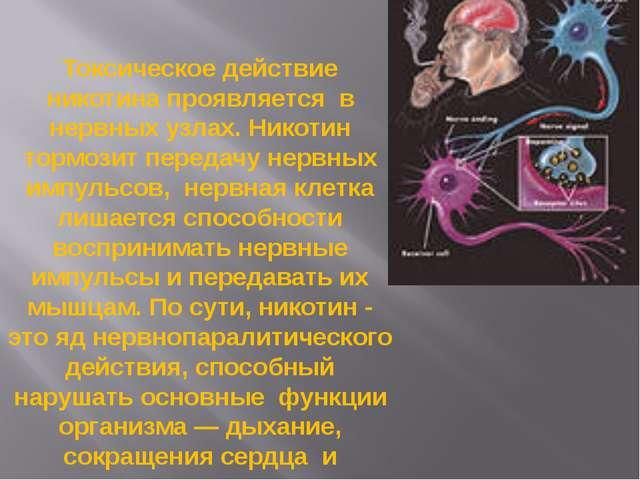 Токсическое действие никотина проявляется в нервных узлах. Никотин тормозит п...