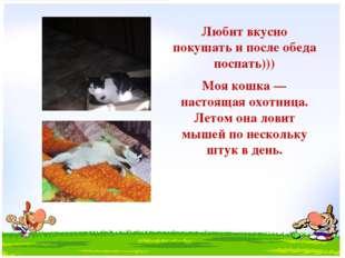 Любит вкусно покушать и после обеда поспать))) Моя кошка — настоящая охотниц