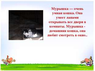 Мурышка — очень умная кошка. Она умеет лапами открывать все двери в комнаты.