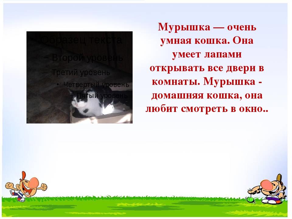 Мурышка — очень умная кошка. Она умеет лапами открывать все двери в комнаты....